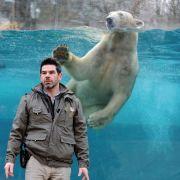 Brice Lefaux, directeur du zoo : «On n'a jamais eu autant besoin de parcs zoologiques»