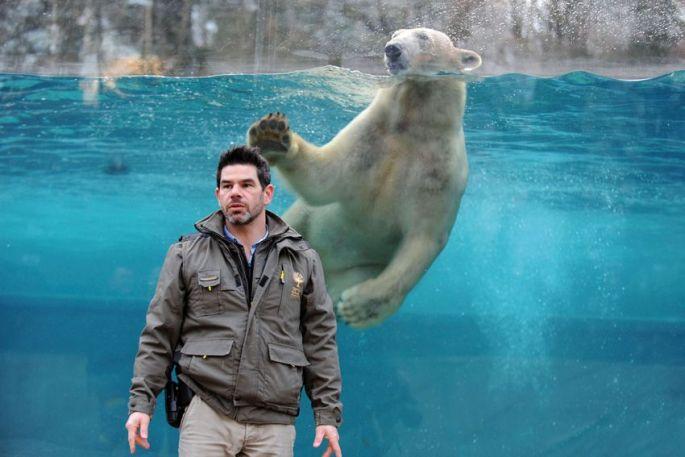 Brice Lefaux, devant le bassin des ours blancs au Zoo de Mulhouse