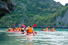 En balade ou en eaux vives, le canoë kayak est un sport que l\'on peut pratiquer partout en Alsace.