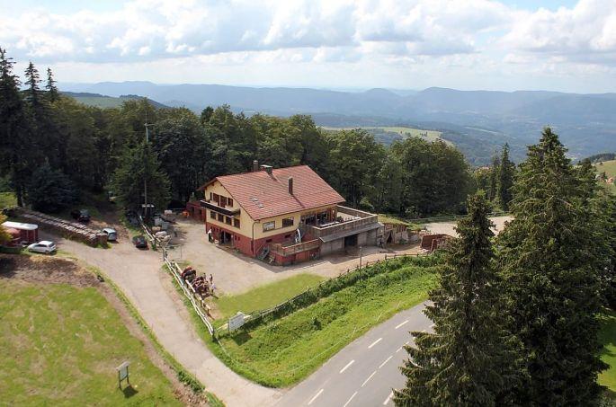 Le centre équestre Cheval Alsace au Champs du Feu