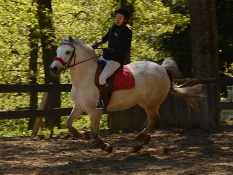 balade cheval jungholtz