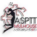 Champion League ASPTT Mulhouse VB - Alba BLAJ Roumanie