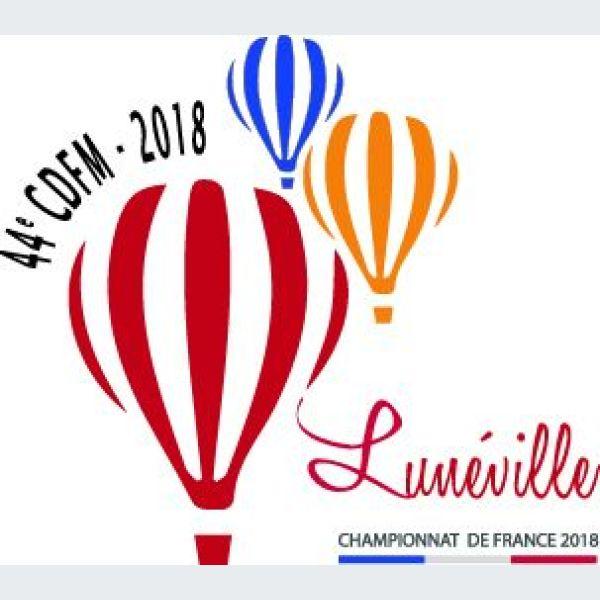https://www.jds.fr/medias/image/championnat-de-france-de-montgolfieres-2018-80332-600-600-F.jpg