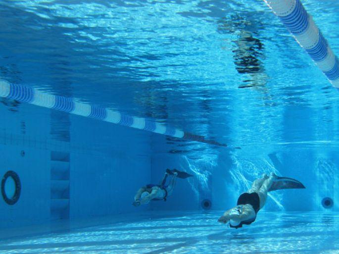 Championnats de france d apn e mulhouse natation for Piscine illberg mulhouse