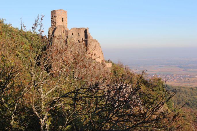 Les ruines du Girsberg vue depuis le château St Ulrich