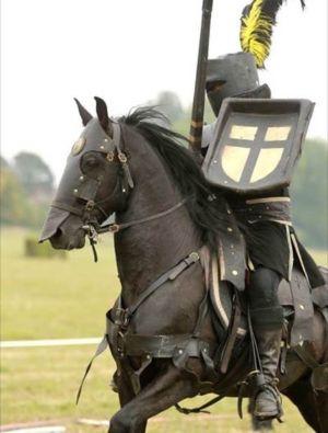 Les preux chevaliers au rendez-vous des Médiévales de Pont-à-Mousson