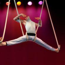 Cirque Warren Zavatta