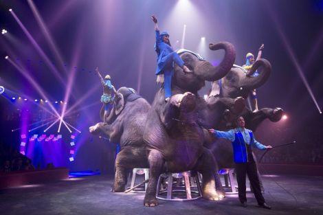 Le Cirque Arlette Gruss de passage en Alsace