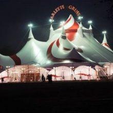 Cirque Arlette Gruss : Bêtes de Cirque 35 ans