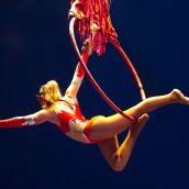 Cirque Bormann Moreno