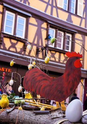 Oh une poule à Colmar!