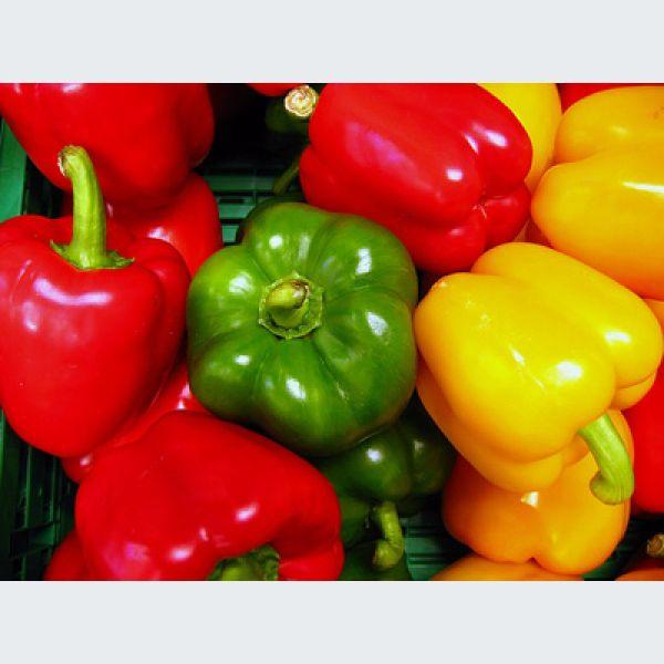 Comment choisir les poivrons rouges verts ou jaunes - Cuisiner le poivron vert ...