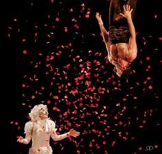 Concerto pour deux clowns, un spectacle primé par le public à Avignon en 2013
