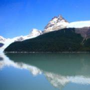 Patagonie, de la glace aux fleurs