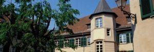 cour des chaines mulhouse : expositions et arts alsace haut-rhin cours des chenes