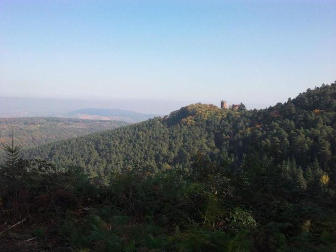Vue sur les châteaux d\'Ottrott lors de la course