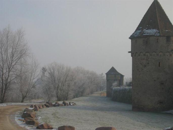 Course Vignes et Remparts à Ribeauvillé