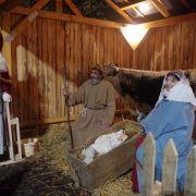 Noël 2021 à Lutzelhouse : Le Séquoia de Noël
