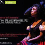 Opération Salam Shalom Elsass