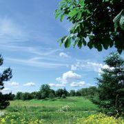 Cyclo-tour : Ensisheim, une ville aux 4 fleurs