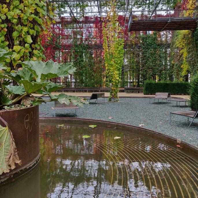 Découvrir les jardins suspendus du MFO park
