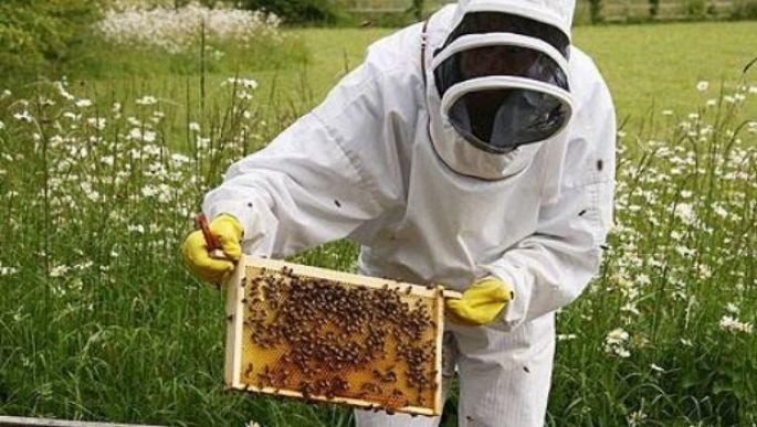 apiculteur 8 lettres