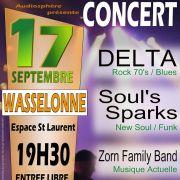 Delta + Soul\'s Sparks + Zorn Family Band