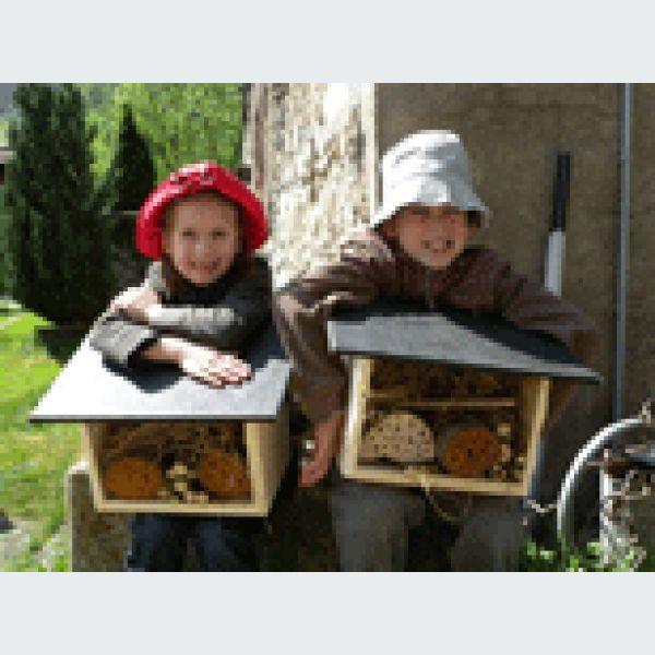 comment accueillir les insectes auxiliaires lautenbachzell atelier vivarium du moulin. Black Bedroom Furniture Sets. Home Design Ideas