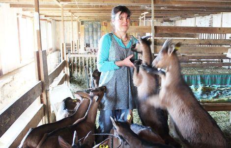Frédérique et ses chèvres