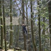 L'aventure est dans les arbres