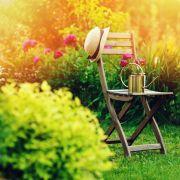 Désir de jardin