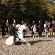 Détours de cheval à Saverne 2018
