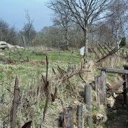 L\'Alsace prise dans la Grande Guerre