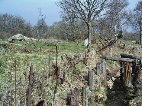 Deux tranchées se faisant face au Vieil Armand (Hartmannswillerkopf)