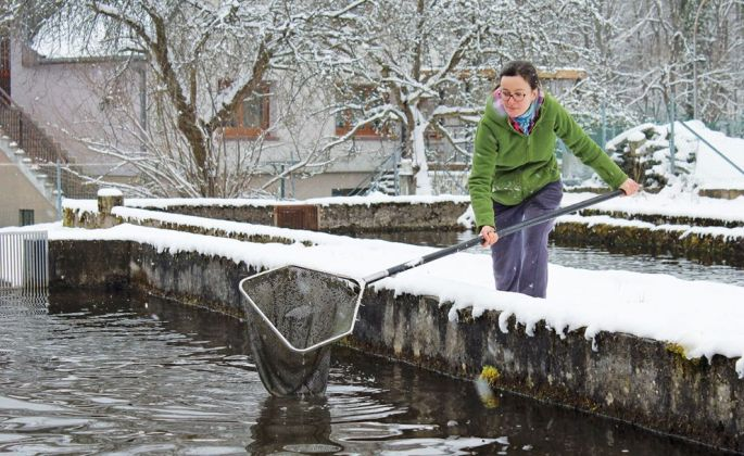 Nathalie Guidat nous attrape quelques truites sous la neige : c\'est vraiment de l\'extra-frais !