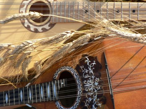 Ensemble de Mandolines et Guitares