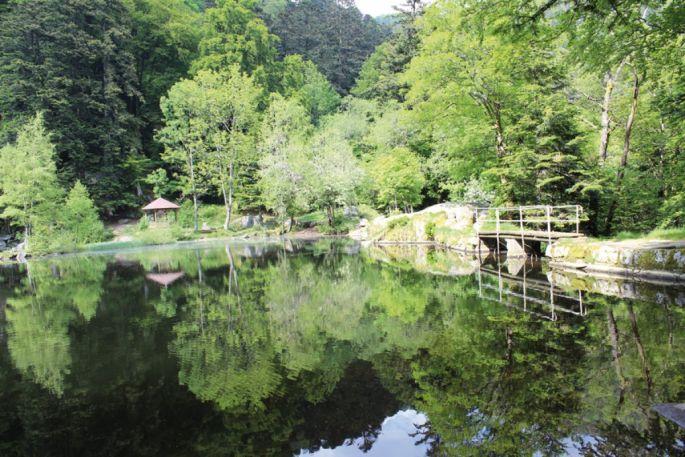 Le lac du Fischboedle