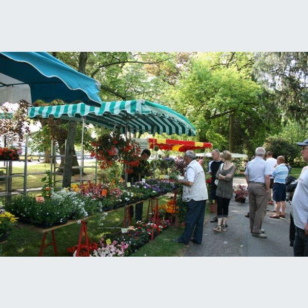 Espace jardin march aux plantes haguenau for Jardin haguenau