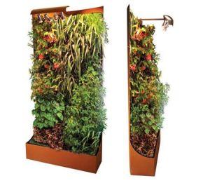 Exemple de mur végétal