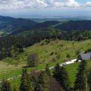 Transhumance de printemps 2020 dans les Vosges en Alsace