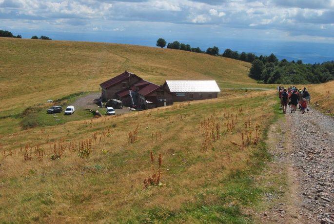 La ferme auberge du Wissgrut à Sewen