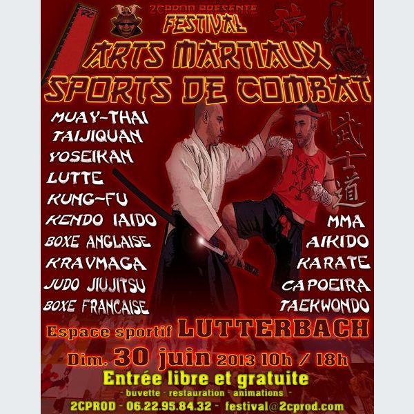 Sport de combat 95