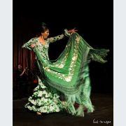 Festival Flamenco Avec Jose Maya