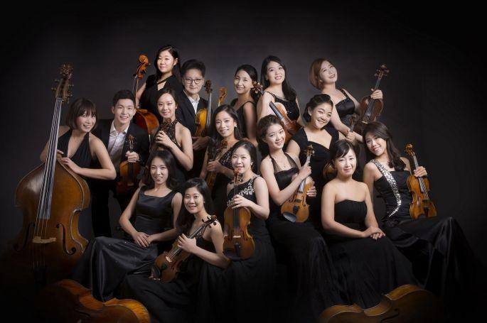 Les musiciens de Joy of Strings