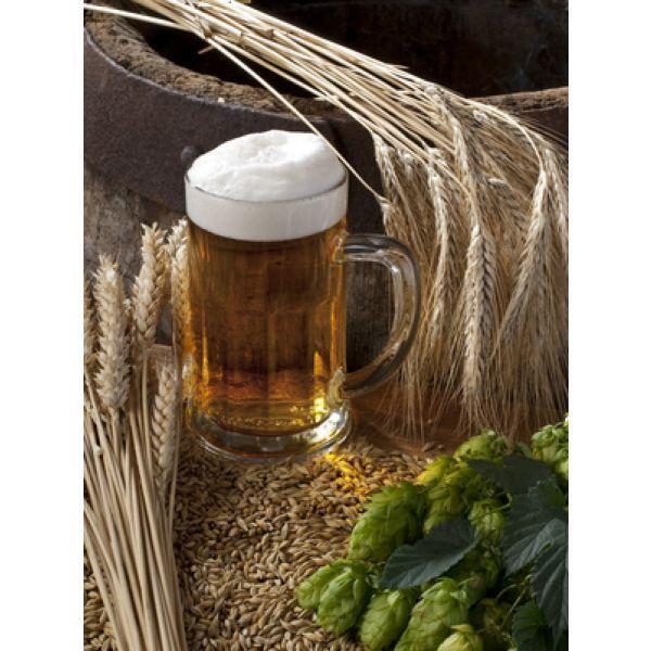 """Résultat de recherche d'images pour """"Deuxième ville du Bas-Rhin connue pour sa fête de la bière"""""""