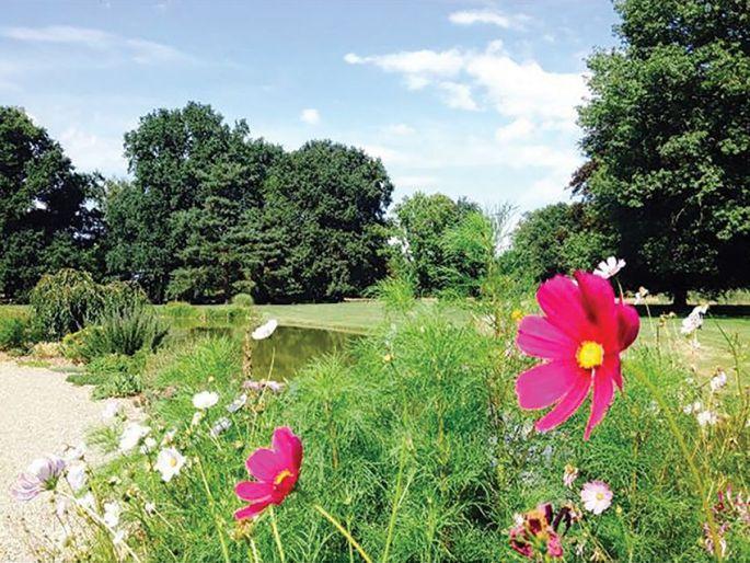 La Fête des Plantes de Schoppenwihr se tient en automne mais aussi au printemps