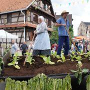 Fête des Récoltes d\'antan à Hindisheim 2021
