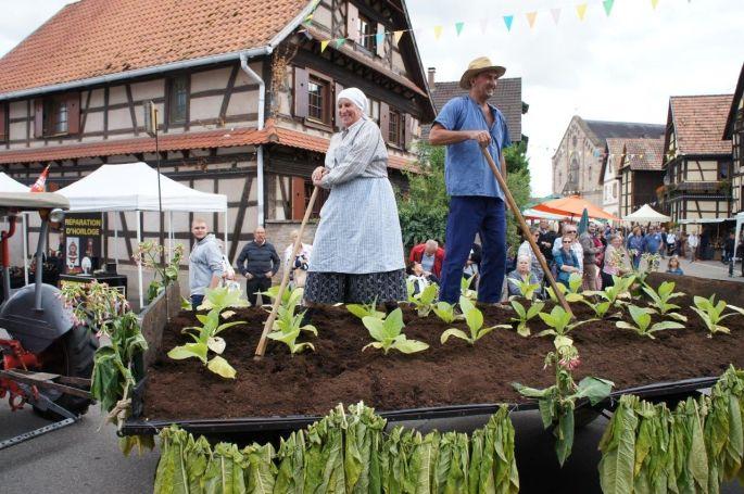 Un char typique de la fête des récoltes d\'antan à Hindisheim