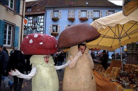 Fête du Champignon 2016 à Eguisheim