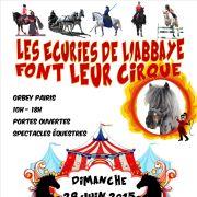 Fête du cheval : Les écuries de l\'Abbaye font leur cirque
